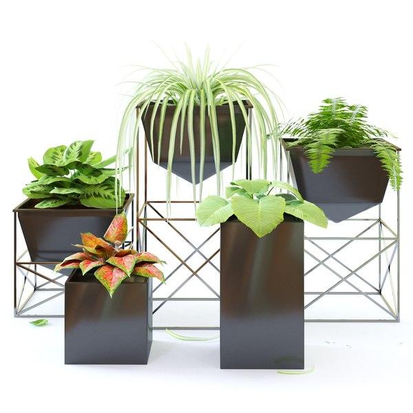 3D plants flowers