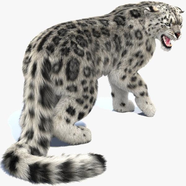 snow leopard 2 rigged 3D