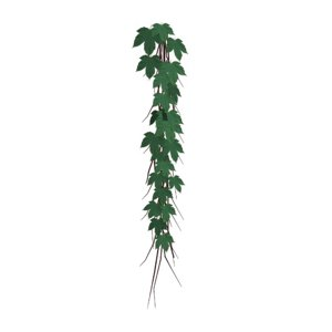 ivy plants model