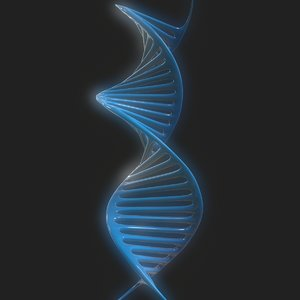dna science helix 3D model