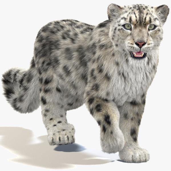 snow leopard 2 furry 3D model