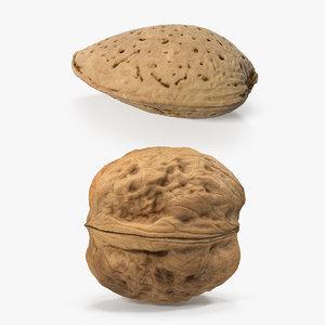 3D nuts raw almond model