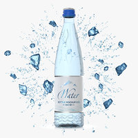 Glass Bottle 50 cl with Water and Ice Splash