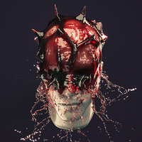 Splash Head 8