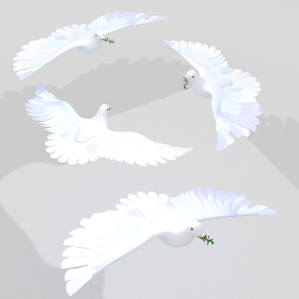 3D dove pigeon bird