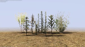 3D pack small plant
