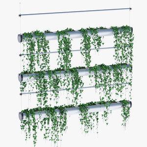 pendularis plants 3D model