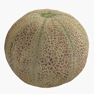 cantaloupe scanned 3D model