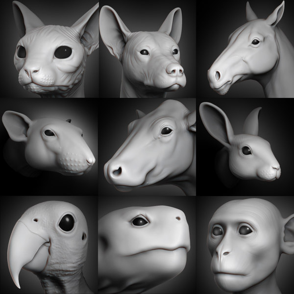 animal head vol 1 3D model