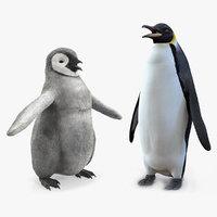 emperor penguin baby model