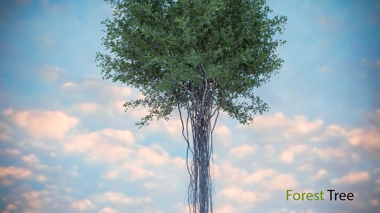 modelo 3d bosque _árbol - TurboSquid 1431273