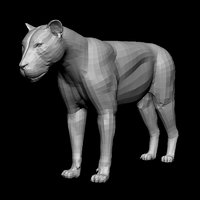 lion anatomy body character 3D model