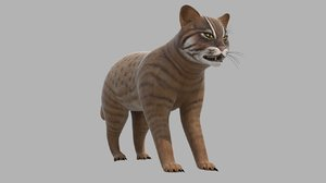 lynx animal 3D model
