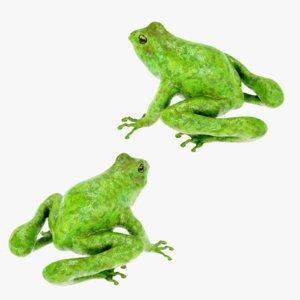 lightwave animation frog 3D model
