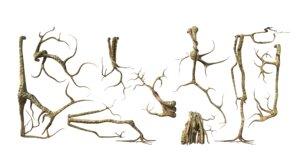 3D roots vines