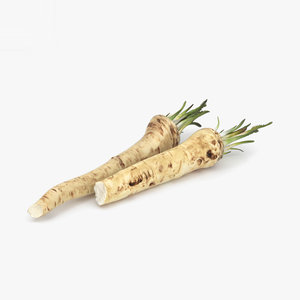 3D horseradish food