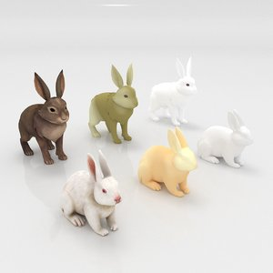 3D rabbit animal mammal model