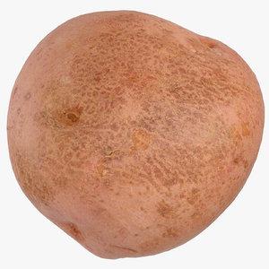 3D red potato 03 ready
