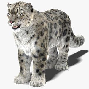 3D model snow leopard furry animal hair