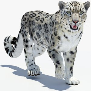 snow leopard 2 fur 3D model
