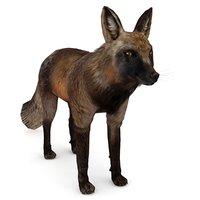 black red fox 3D model