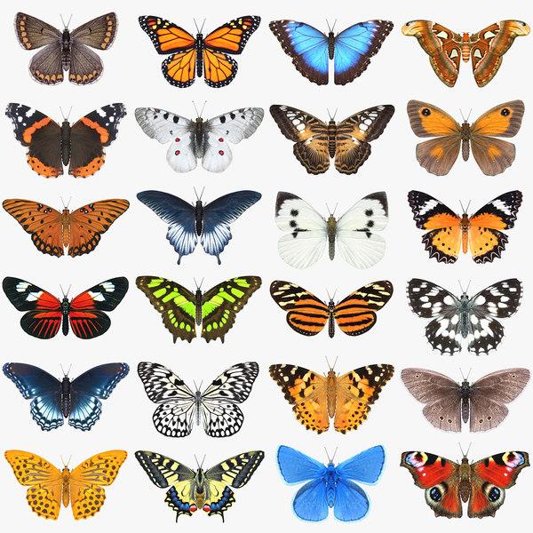 Les papillons - Gérard de Nerval Butterfly_Set_3_Signature.jpgE99D1DE8-7C94-4CA3-A8EA-19034AFCB38FLarge