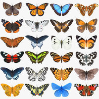 Butterfly Collection 3