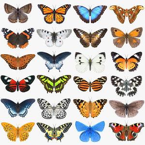 3D butterfly 3