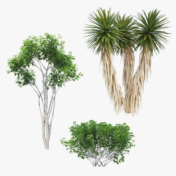3D trees 01 palm model