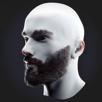 Beard Low Poly