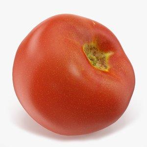 tomato 01 model