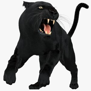 3D model black panther fur