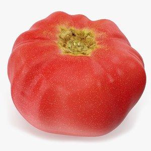 tomato 02 3D