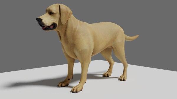 short dog 3D model