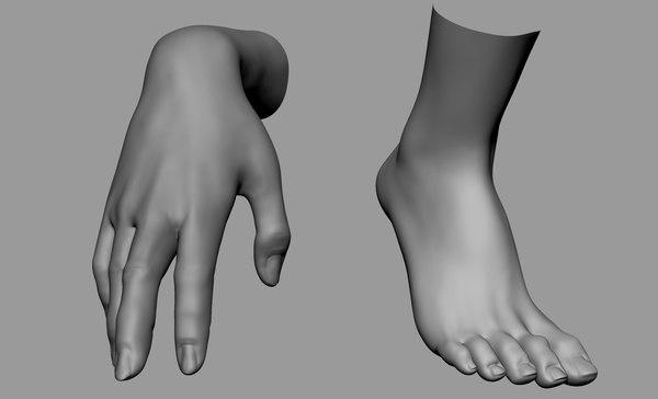 3D model female hand foot
