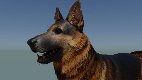 realistic german dog 3D model