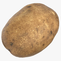 potato 01 ready games 3D model