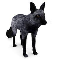 silver fox 3D model