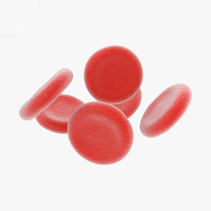 3D model red blood cell