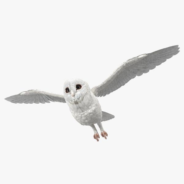 white barn owl flying bird model