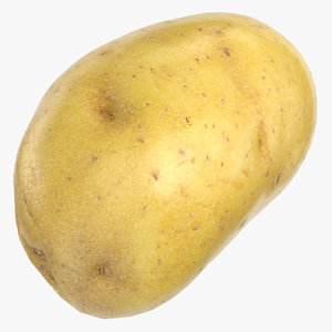 potato clean ready 01 3D