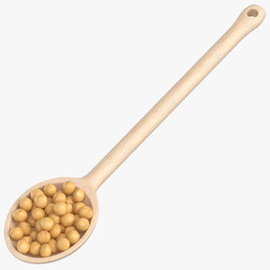3D wooden spoon soy grains model