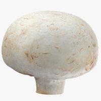 3D white button mushroom 02