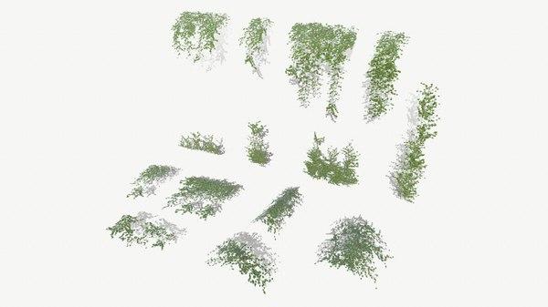 ivy modular assets 3D model