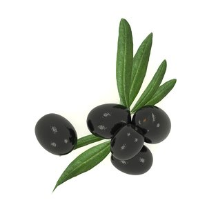 olive black 3D model