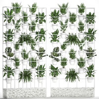 plants vertical gardening 3D
