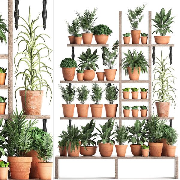 vertical garden plants model