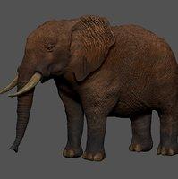 african elephant grey ocher 3D model