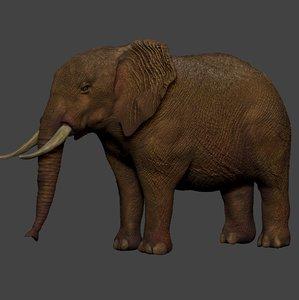 african elephant ocher brown 3D model