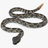 giant dark rattlesnake snake 3D model